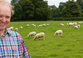 sheeps-milk-featured