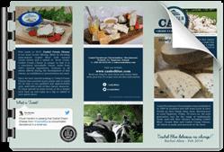 trifold-leaflet
